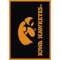 Milliken College Team Spirit (NCAA) Iowa 74218 Spirit Rectangle (4000019090) 3