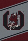Milliken College Team Spirit (NCAA) South Carolina 74364 Spirit Rectangle (4000019457) 2'8
