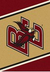 Milliken College Team Spirit (NCAA) Boston College 68882 Spirit Rectangle (4000019188) 5'4