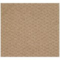 Capel Rugs Creative Concepts Raffia - Octagon 6
