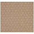 Capel Rugs Creative Concepts Grassy Mountain - Octagon 8