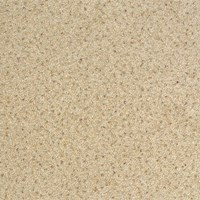 "Milliken Legato Embrace: Birch Bark 19.7"" x 19.7"" Carpet Tile 915"